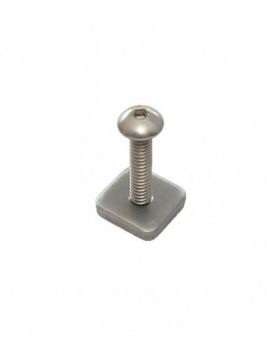 FCS Longboard Screw & Plate - Smart Screw